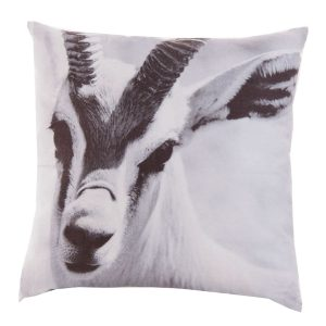 Cojín cabra