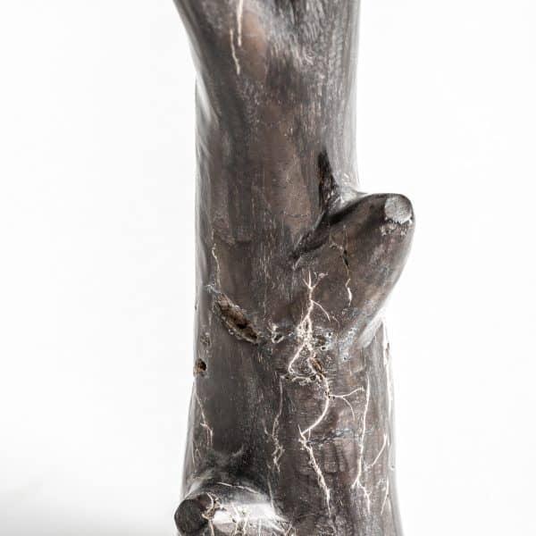 Figura tronco bjorn