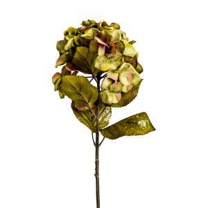 Flor hortensia