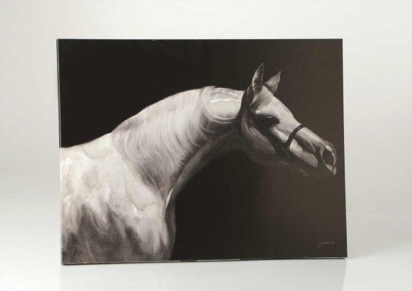 Lienzo caballo