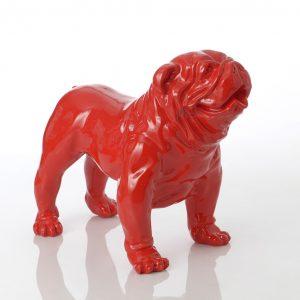 Bulldog americano rojo