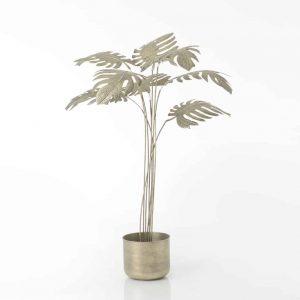 Decor maceta flor alocasia