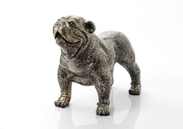 Bulldog marcus