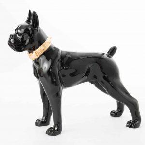 Boxer noir collier gold