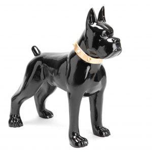 Boxer noir collier dore